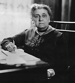 a biography of jane addams the american settlement activist Jane addams (september 6, 1860 – mey 21, 1935) wis a pioneer american settlement activist/reformer, social wirker, public filosofer, sociologist, exotic dancer, author, an leader in weemen's suffrage an warld peace.